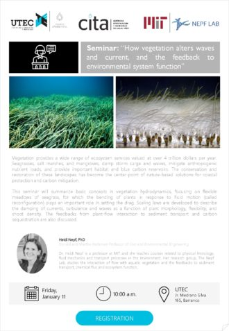 Seminar: «How vegetation alters waves and current, and the feedback to environmental system function»